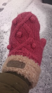 The warmest mittens in existence (possibly)