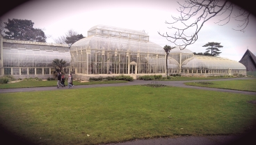 The Curvilinear Glasshouse